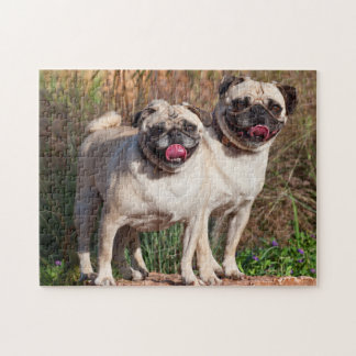 USA New Mexico Two Pugs Standing Together Puzzle