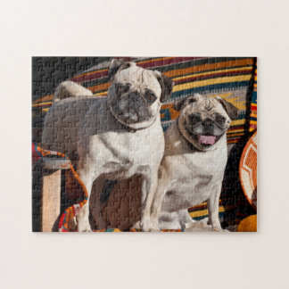 USA New Mexico Two Pugs Together Jigsaw Puzzles