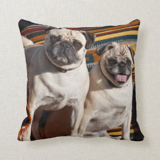 USA, New Mexico. Two Pugs Together Throw Pillow