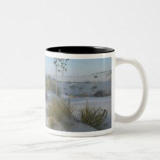 USA New Mexico White Sands National 2 Mug