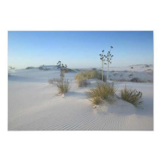 USA, New Mexico, White Sands National 2 Photo Print
