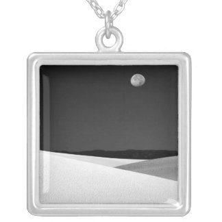 USA, New Mexico, White Sands National Monument. Silver Plated Necklace