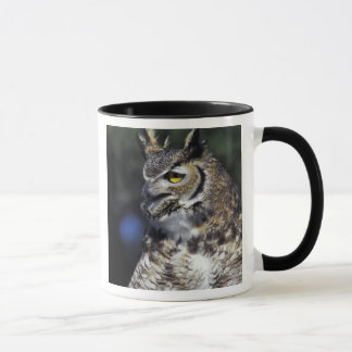 USA, New Mexico, Wildlife West Nature Park. Mug
