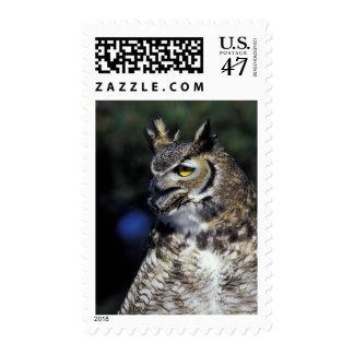 USA, New Mexico, Wildlife West Nature Park. Postage