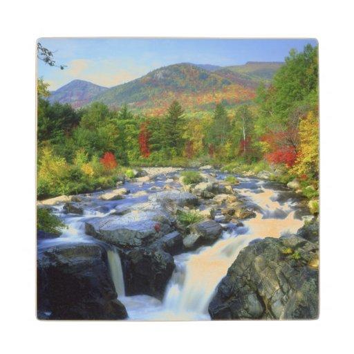 Usa New York A Waterfall In The Adirondack Maple Wood Coaster Zazzle