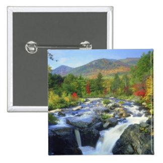USA, New York. A waterfall in the Adirondack Pinback Button