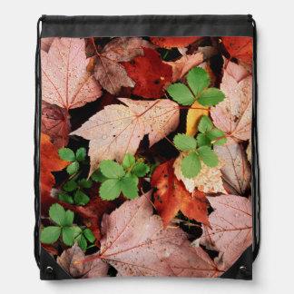 USA, New York, Adirondack Park And Preserve 2 Cinch Bags