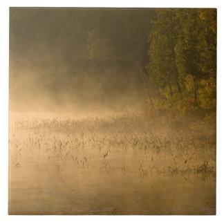 USA, New York, Adirondack Park. Sunrise mist on Tile