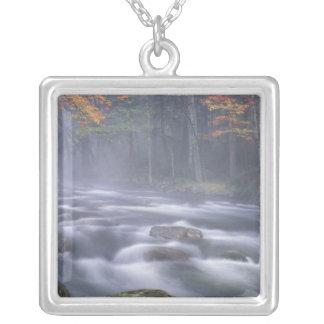 USA, New York, Adirondacks, Big Moose River Silver Plated Necklace