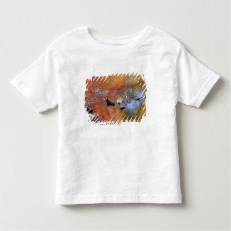 USA, New York, Adirondacks, Fallen Leaves in Toddler T-shirt