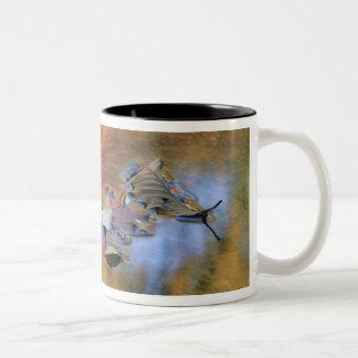 USA, New York, Adirondacks, Fallen Leaves in Two-Tone Coffee Mug