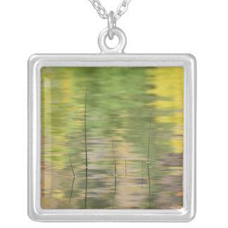 USA, New York, Adirondacks, Reflections in water Silver Plated Necklace