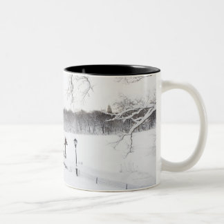 USA New York City Central Park in winter Coffee Mug