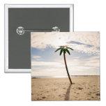 USA, New York City, Coney Island, palm tree on Buttons