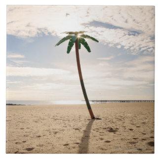 USA, New York City, Coney Island, palm tree on Large Square Tile