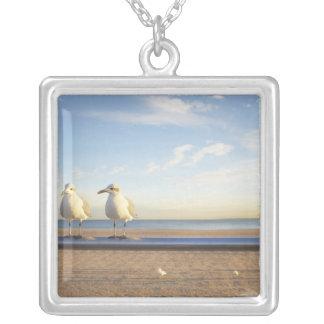 USA, New York City, Coney Island, three seagulls Square Pendant Necklace