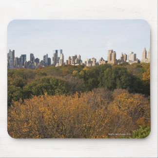 USA, New York City, Manhattan skyline from Mouse Pad