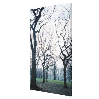 USA, New York, New York City: Central Park Canvas Print