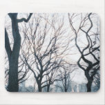 USA, New York, New York City: Central Park Mouse Pad