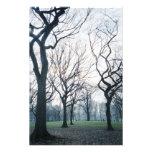 USA, New York, New York City: Central Park Photo Print