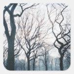 USA, New York, New York City: Central Park Square Sticker
