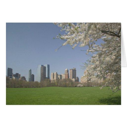 USA, New York, New York City, Manhattan: 19 Card