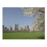 USA, New York, New York City, Manhattan: 19 Postcard