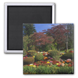USA, New York, Saugerties, Seamon Park. Autumn 2 Inch Square Magnet