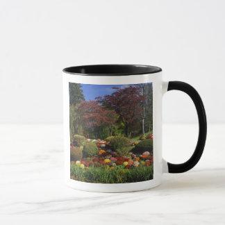 USA, New York, Saugerties, Seamon Park. Autumn Mug