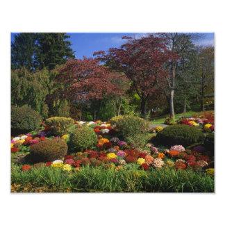 USA, New York, Saugerties, Seamon Park. Autumn Photo Print