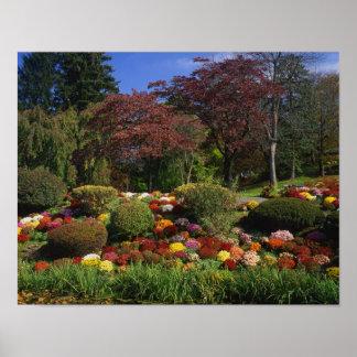 USA, New York, Saugerties, Seamon Park. Autumn Print