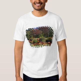 USA, New York, Saugerties, Seamon Park. Autumn T-Shirt