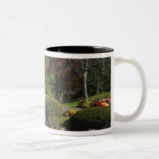 USA, New York, Saugerties, Seamon Park. Autumn Two-Tone Coffee Mug