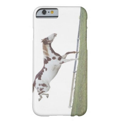 USA, New York State, Hudson, Horse jumping in Barely There iPhone 6 Case