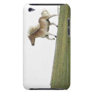 USA, New York State, Hudson, Horse running in 2 iPod Touch Cases