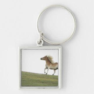 USA, New York State, Hudson, Horse running in 2 Keychain