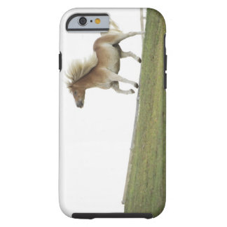 USA, New York State, Hudson, Horse running in 2 Tough iPhone 6 Case