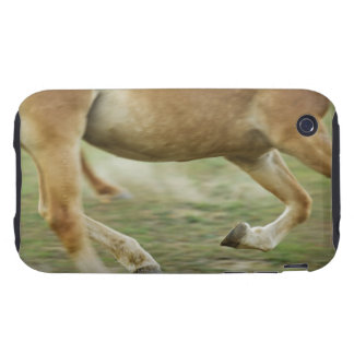 USA, New York State, Hudson, Horse running in iPhone 3 Tough Cover