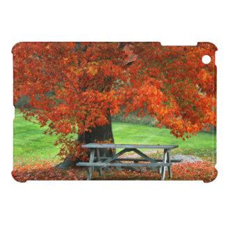 USA, New York, West Park. Bench Under Maple iPad Mini Case