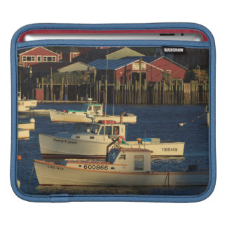 USA, North America, Maine, Bernard, Fishing Sleeve For iPads