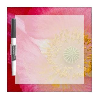 USA, North Carolina. Close-up of poppy interior Dry Erase Board