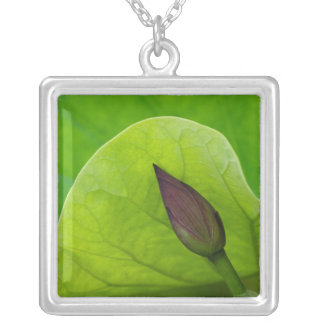 USA; North Carolina; Lotus leaf and bud Silver Plated Necklace