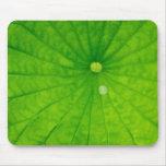 USA; North Carolina; Lotus leaf with dew drop Mousepad