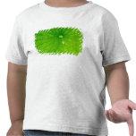 USA; North Carolina; Lotus leaf with dew drop Shirts