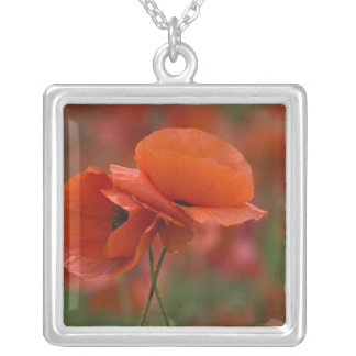 USA, North Carolina. Two red poppies Personalized Necklace