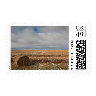 USA, North Dakota, Pillsbury, Farm Field, Early Stamp