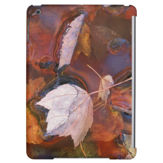 USA, Northeast, Fall leaves in puddle with iPad Air Covers
