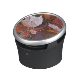 USA, Northeast, Fall leaves in puddle with Speaker