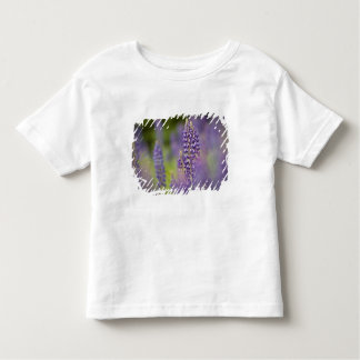 USA, Northeastern Minnesota, near Silver Bay, Toddler T-shirt