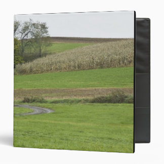 USA, Northeastern Ohio. Amish buggy on farm Binder